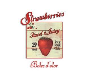 Strawberries / Fresa / Aroma del Mes – 25%