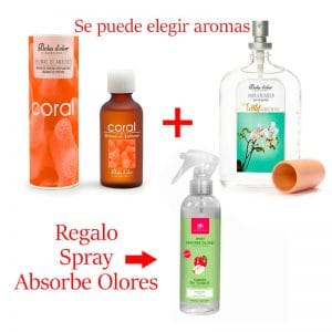 ambientador-spray-100-ml-esencias-brumizador-mas-regalo-spray-absorbe-olores.